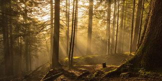 Anspruchsvolle Wanderungen und Bergtouren im Allgäu: Tipps einer Einheimischen - ©Frieda Knorke