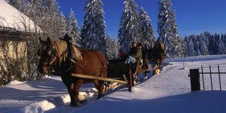 Tour du monde hivernal sans quitter le Doubs... ©Conseil Départemental du Doubs