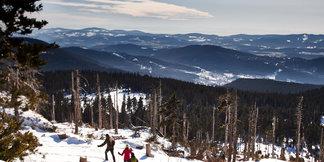 Schneeschuhwandern im Bayerischen Wald – beruhigend anders ©Tourismusverband Ostbayern
