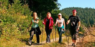 Dobře zvládnutý nordic walking je pro hubnutí lepší než běh ©www.lanterna.cz