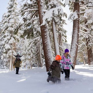 Mammoth Free Family Fun  - © Mammoth Lakes Tourism