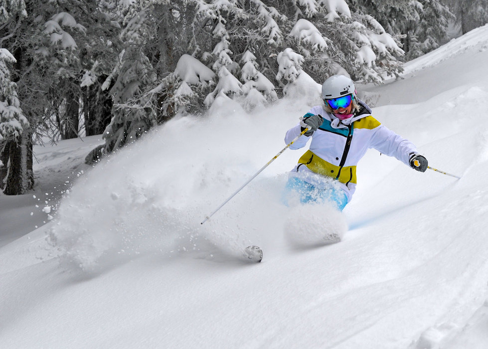 Steamboat Springs local and 3 time Olympian, Caroline Lalive, keeps a powder smile going as she floats through a new 10 inches of fresh Colorado powder this morning, Sunday, January 22, 2012. Photo by Larry Pierce