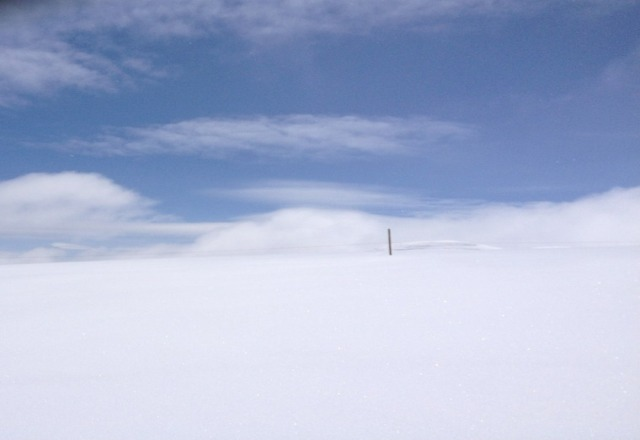 Top of poma lift yesterday. christmas in april! Amazing!