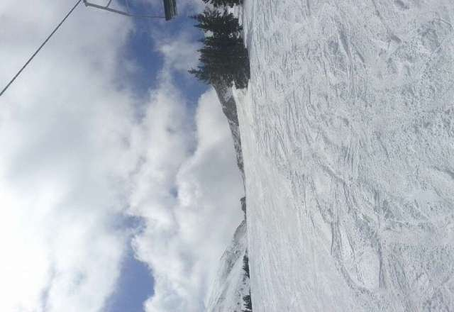 best day yet, sunny, very little wind, and fresh pow till noon