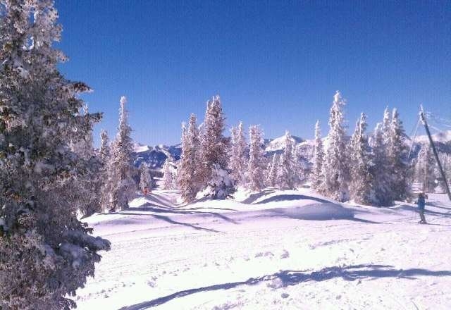 really enjoyed wolf creek, great snow and good people on the mountain