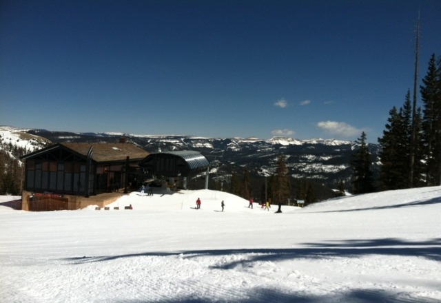 great day! sunny with no lines and decent snow to romp around in.