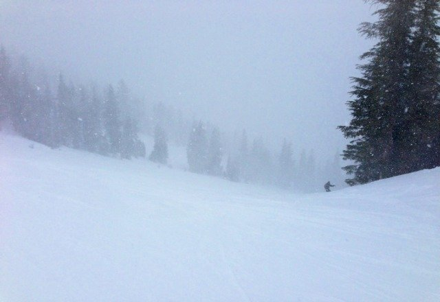Amazing powder today! Bad visibilty but that's the trade off
