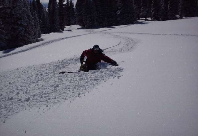 so much pow yesterday it was f@#$ing rediculus!