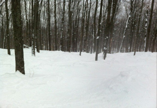 Glades were great on Wednesday! More Gore!!!