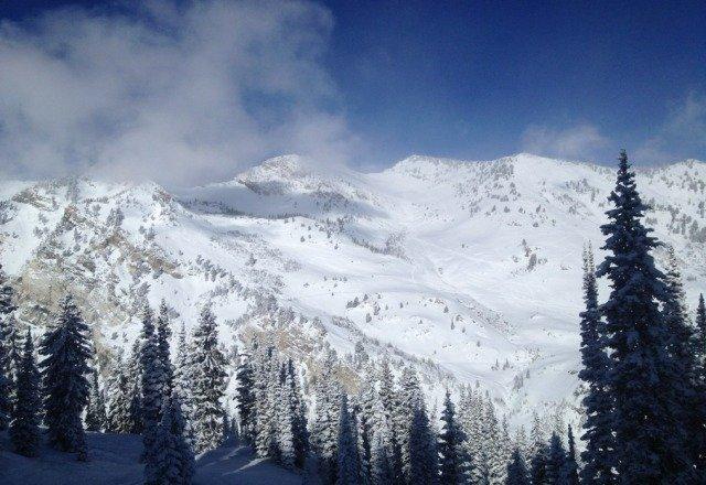 alta is amazing. this mountain is no joke
