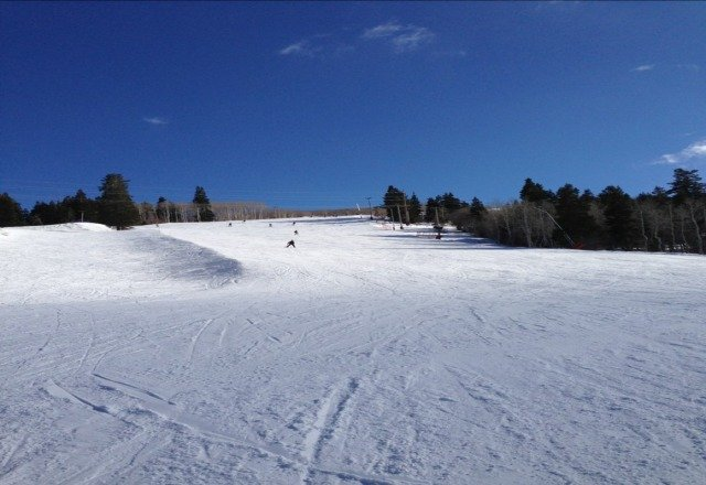 nice day after the recent storms. Plenty of powder to be had in Jupiter and the trees under Motherlode.