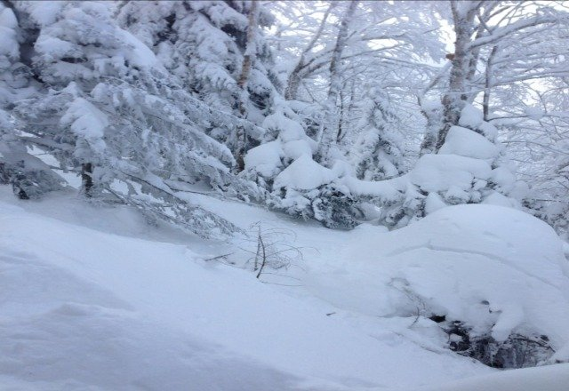 The glades at Okemo were amazong today.