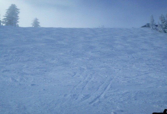 The powder on the moguls is amazing.