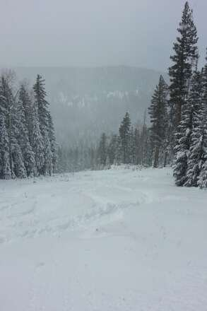 Powder day! Never had an opening day like this weekend. this is mid season powder up top