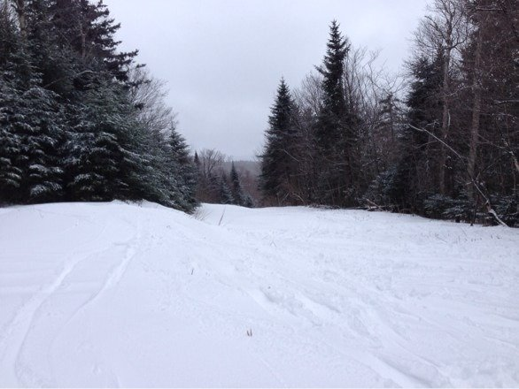 Great conditions today.  Lots of open powder and new trails.  Should only get better!