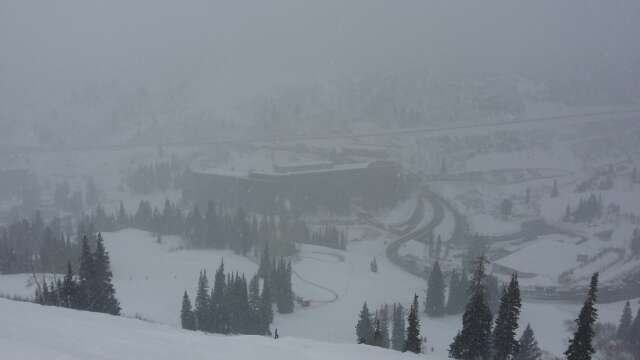 It's snowing at Snowbird. .happy new year!