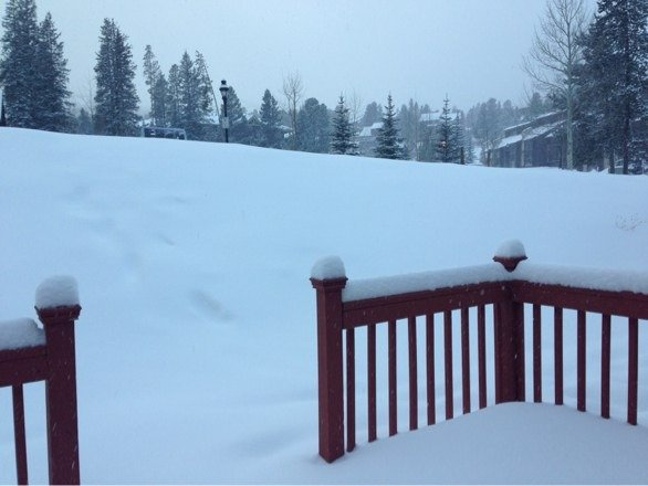 """7"""" of new snow last night, light snow now. Perfect skiing conditions."""