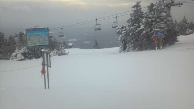 no lines, all groomed, mostly open, can't complain