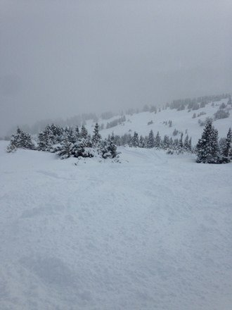 Fresh pow peak 8!
