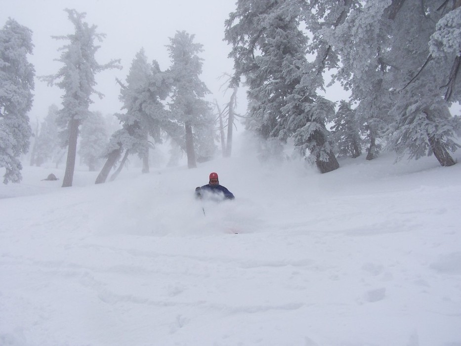 Powder skiing at Mt. Baldy Ski Resort, California
