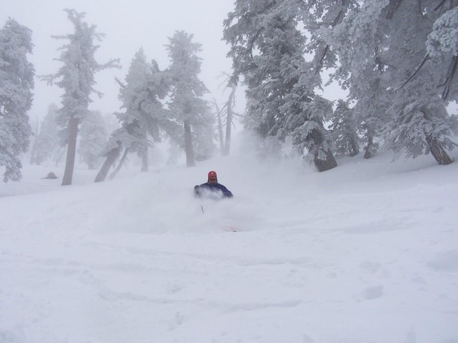 Powder skiing at Mt. Baldy Ski Resort, California