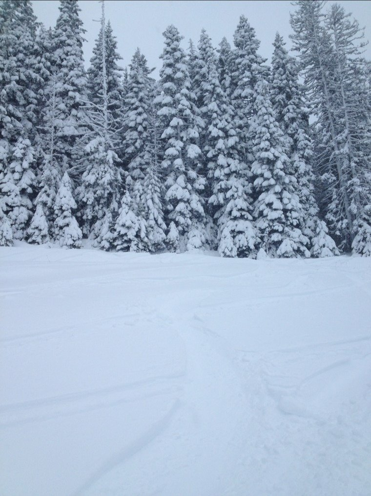 "another 3"" this morning... groomed runs are very nice and off runs have fun freshies"