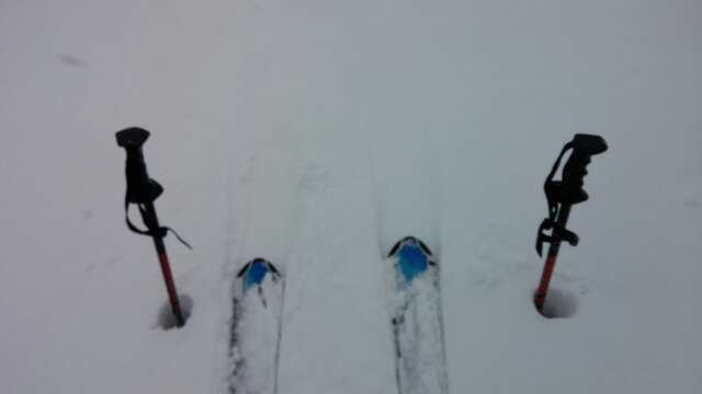 Just a superb day of powder skiing.