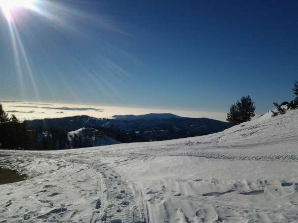 groomers are great. follow the sun around the mountain and its soft. upper nugget is best so far.