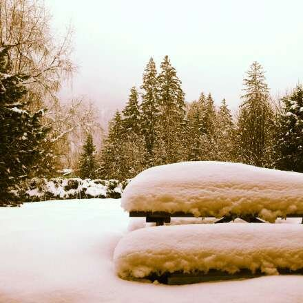 Fresh snow over night. at least 1ft of snow. Still falling.