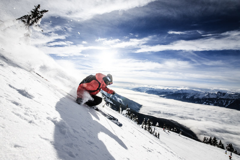 Upper Southside runs at Revy offer great wide open tree skiing. Skier: Todd Ligare - © Liam Doran