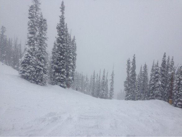 Some great fresh powder this morning, best day for me all season! Long lines by noon.