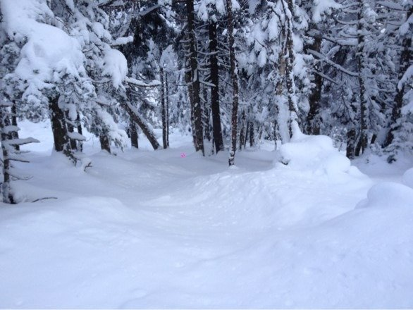 Great day today, surprise 7 inches on Sunday, still plenty left today! Mt Ellen has powder on main trails still, and untracked shin deep lines all through the woods. About 25 people there today, amazing