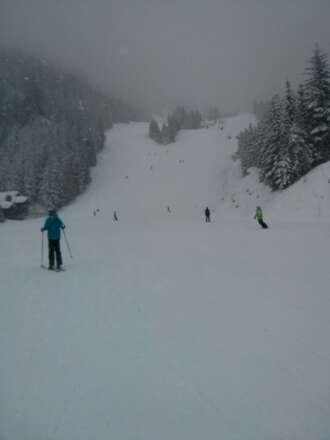 great powder day, not too cold, had a fantastic time. however visibility deteriorates during the late afternoon.