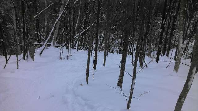 glades at mittersil r in great shape! pow, pow in epic stashes!