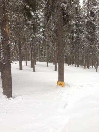 Fresh snow, even the caution signs are buried, it's a dream right now!