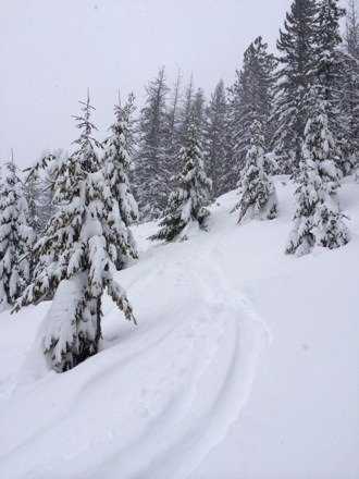 Winter's finally here! Powder everywhere and cold enough to hold it.