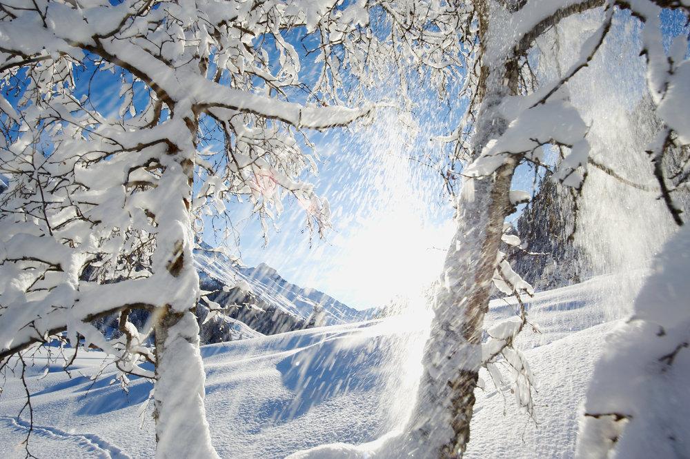 Herrliche Schneelandschaft bei Monstein - © KlostersDavos