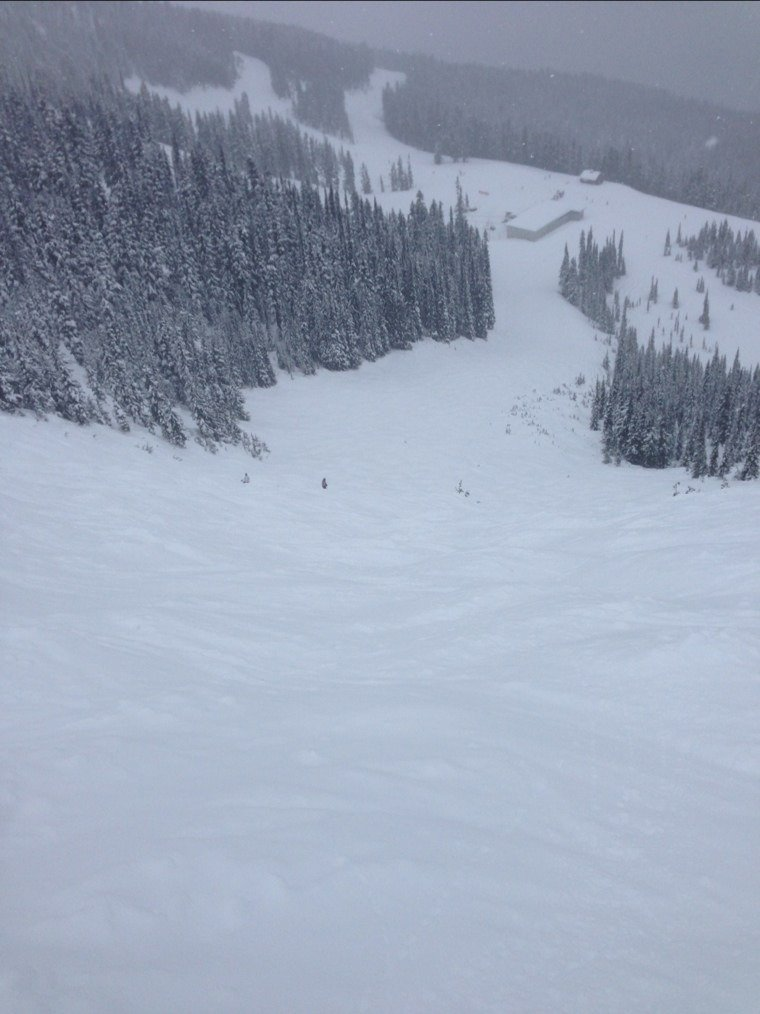snowing all morming. grrat powder up in harmony bowl. best skiing do far this week