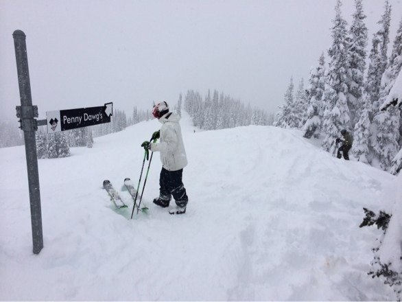 All powder. All day. Light and fluffy for the beastly PNW. Kept snowing...