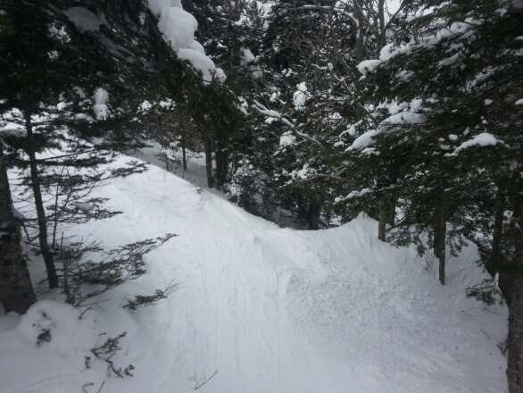 powder in the trees if you can find it. skied off by midday on groomers. great mountain. best in the east