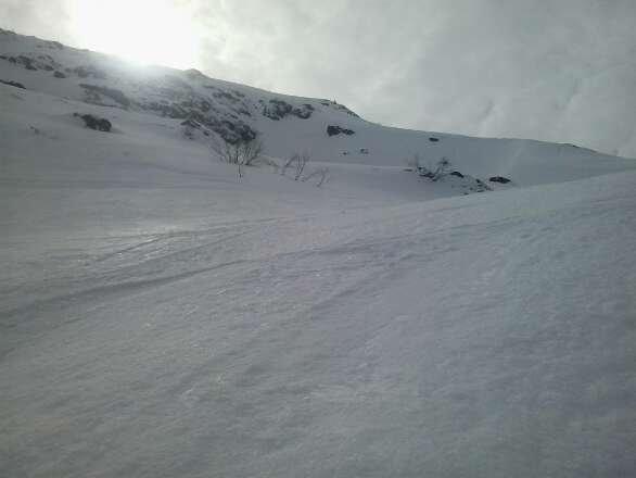 bonne neige de printemps . .