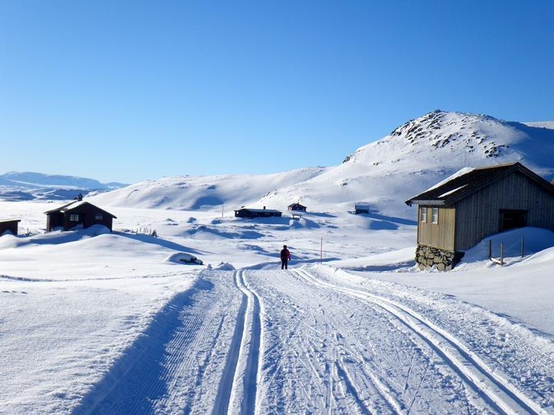 Hesthovdstølen - Bergsjørennet - © Turrenn med panoramautsikt og start på Bergsjøstølen og mål på Liatoppen