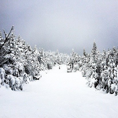 Felt like February... Plenty of snow but horrible visibility at the top of mountain ..... Fresh snow all over the place