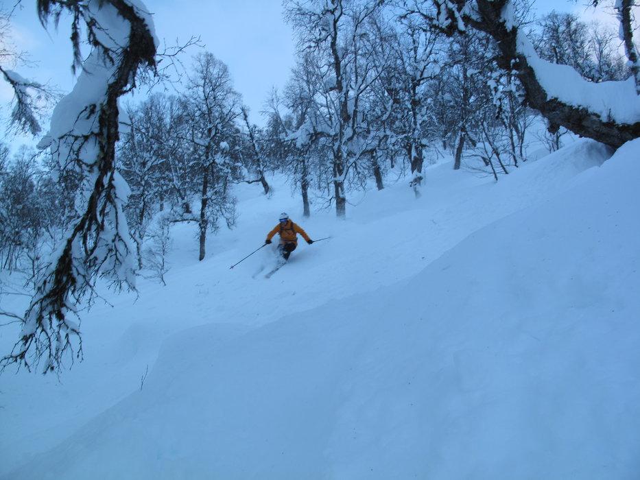 null - © Sogndal - Hodlekve