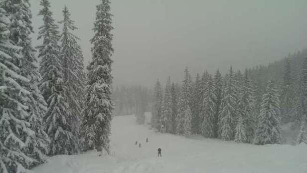 Schon lange nicht mehr so viel Schnee in Spitzing gesehen. Ab und zu noch Eisplatten zu spüren