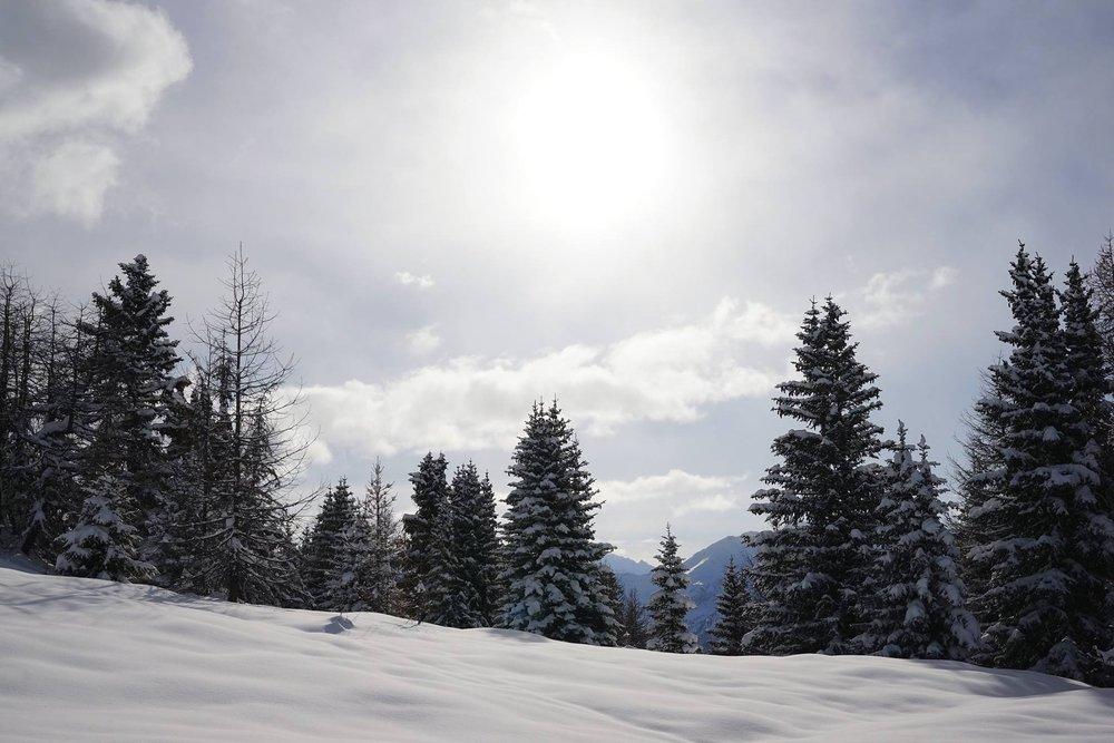 Courmayeur, 27.12.2014 - © Società Guide Alpine Courmayeur (Facebook)