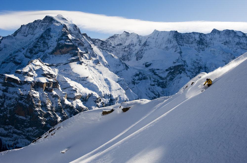 Jungfrau Region: Freerider im Tiefschnee - © swiss-image.ch