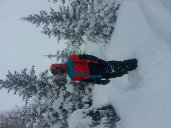 deeeeeeeeeep powder! & it's still snowing.