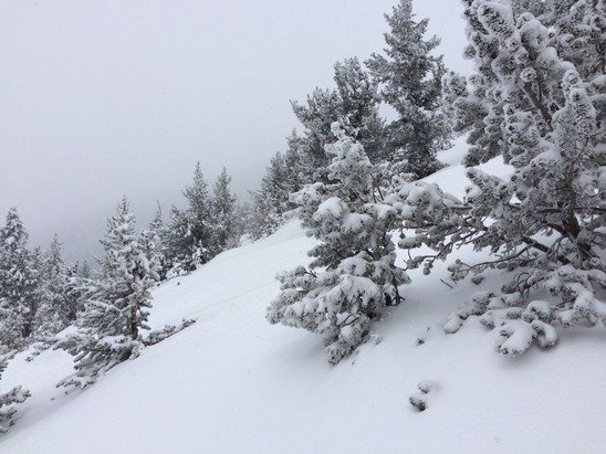 Gorgeous this morn and just dumping now, I love it!!! Will b several feet by the time it's time.