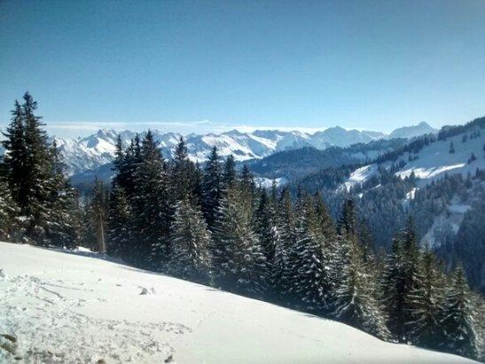 Super sonniger=perfekter Skitag